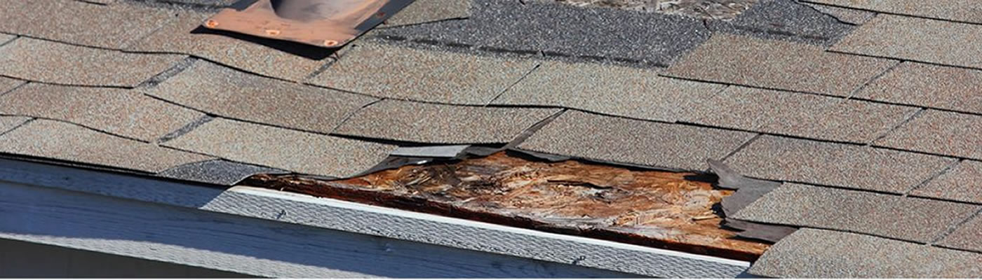 roof repair contractor Fellsmere FL 32948