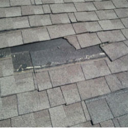 roof repair contractor  Alabama